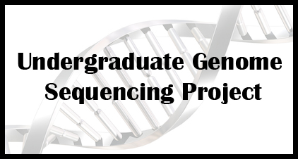 an overview of the genome sequencing in microbiology Recently, whole-genome sequencing (wgs) of pathogens has  ms in  microbiological diagnostics, the reader is referred to a review by.