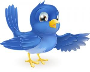 Twitter Bluebird 2012 A1