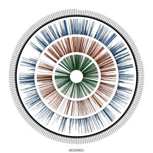 Yp_genome_cov
