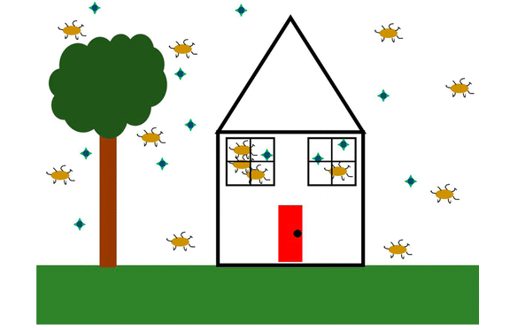 Virus and Bacteria in Indoor and Outdoor Air, DOI: 10.1021/acs.estlett.5b00050, or 7-legged spiders invading a cute house?