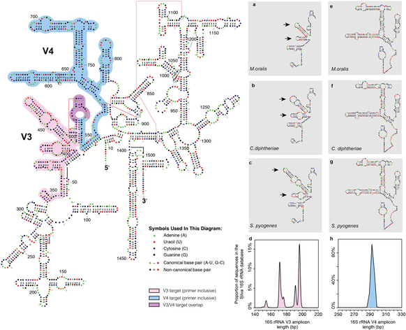 srep16498 f3 important paper intrinsic challenges in ancient microbiome