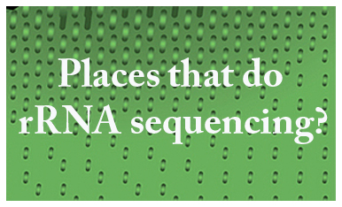 rRna sequencing