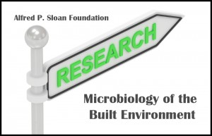 Sloan Research