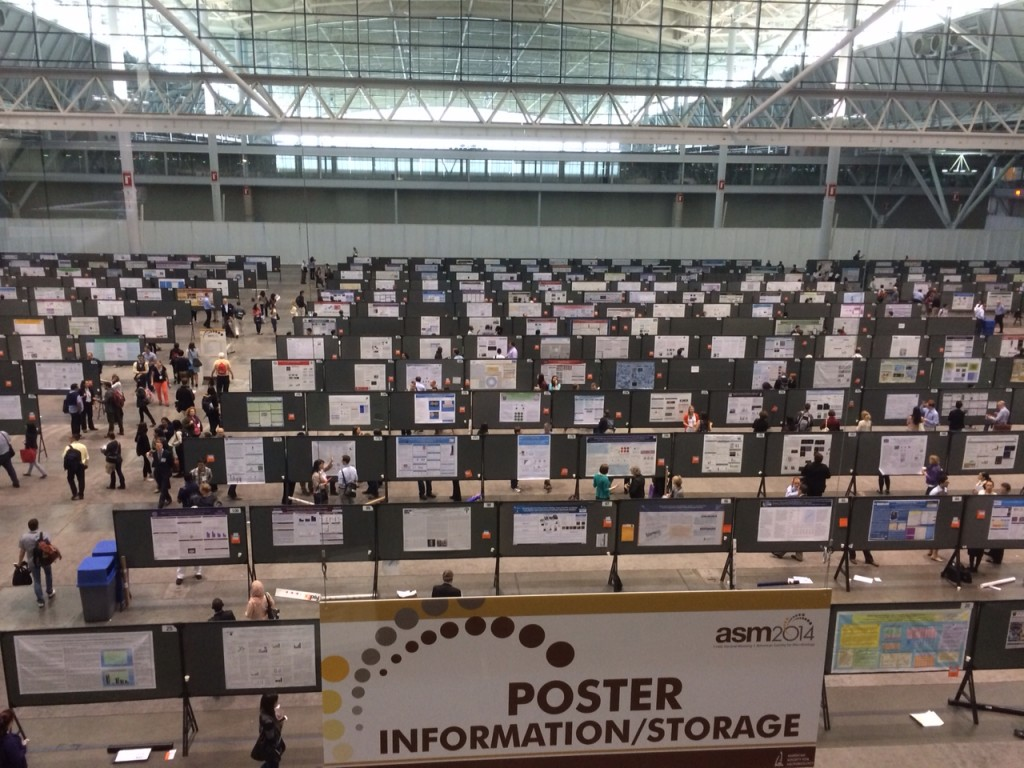 The ASM poster sessions are really impressive.
