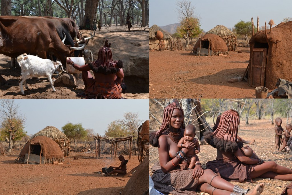 Traditional Himba cow watering hole (A), compound (B), Himba mothers and babies (C), Himba woman cooking in compound (D). Photos by Katie Hinde (B,C, D) and Brooke Scelza (A), used with permission. Compound living structures are built of mud, animal dung, sticks, and water.