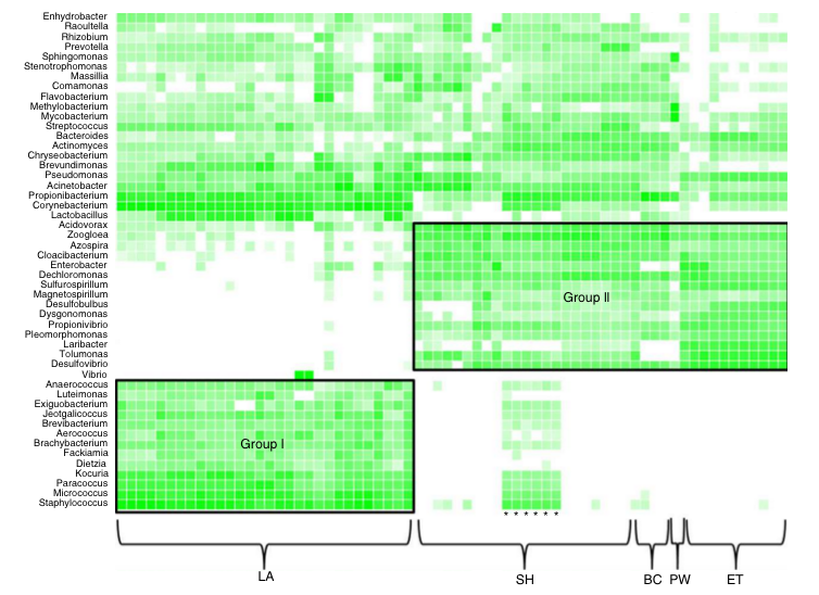 Fig. 5 from Keely et al, 2015. Heatmap of the 50 most abundant bacterial genera, darker green representing more abundance of the corresponding genera. LA is laundry, SH is sink handwash (the stars are the Dec. samples of SH), BC are building controls, PW is potable water, and ET is the equalization tank.