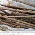 2,000-year-old personal hygiene sticks with remains of cloth