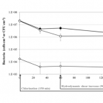 Effect of the two-step cleaning procedure on the concentration of total bacteria