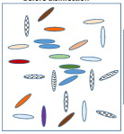 Graphical abstract, detail