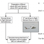 Timeline and schematic for blood and sputum drone flights.