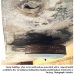 Damp buildings often invite mold