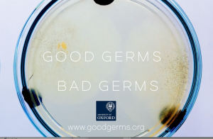 good-germs-bad-germs-film