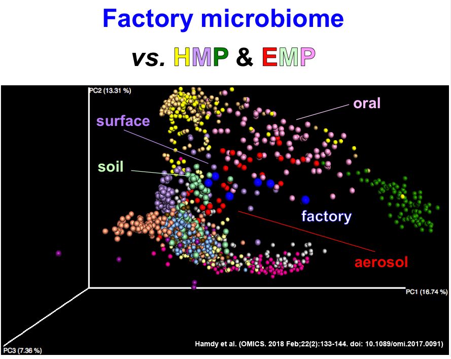 An informative glimpse into the drug factory microbiome: Which bugs coexist with our drugs? The story behind the paper