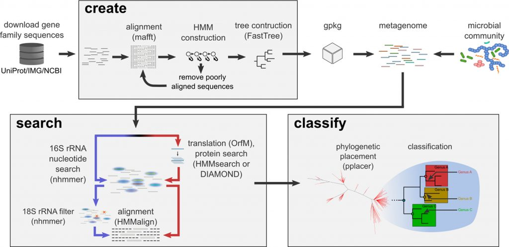"""New tool of interest: GraftM: """"a tool for scalable, phylogenetically informed classification of genes within metagenomes"""""""
