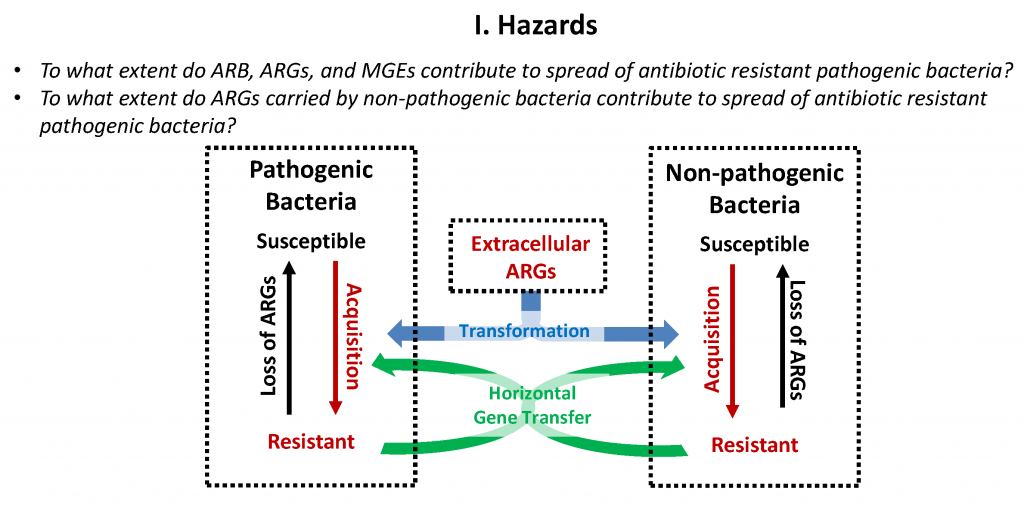 Paper of interest: antibiotic resistance and the safety of reusing treated wastewater