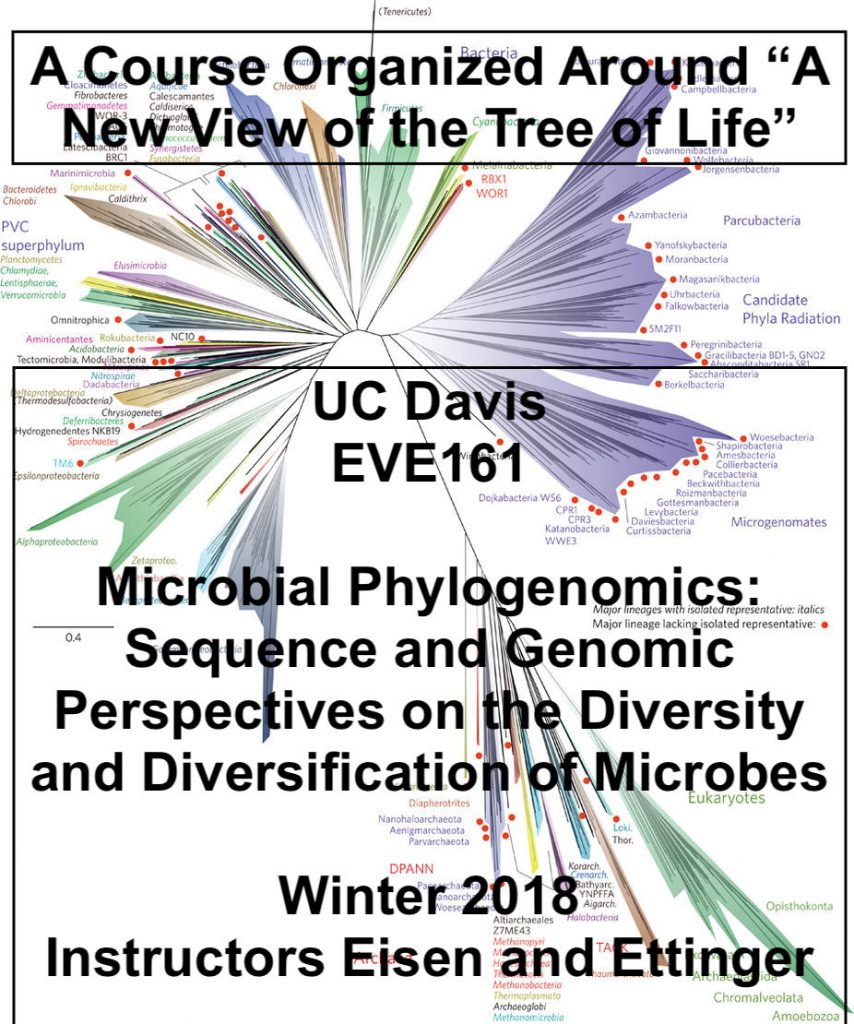 A microbial sequencing discussion course built around a paper and a blog post