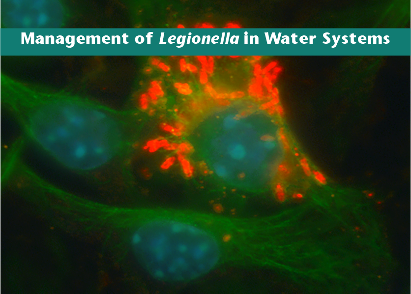 Legionella Report Release Webinar: August 14th, 11AM EDT